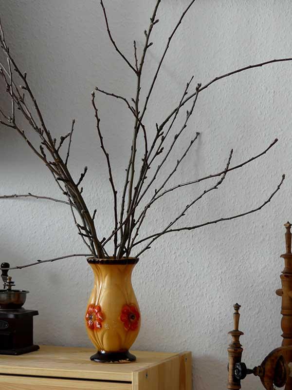 Zweige vom verschnittenem Apfelbaum