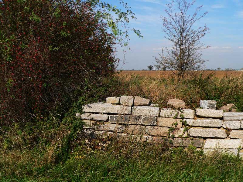 Mauern bauen und Mauern einreißen