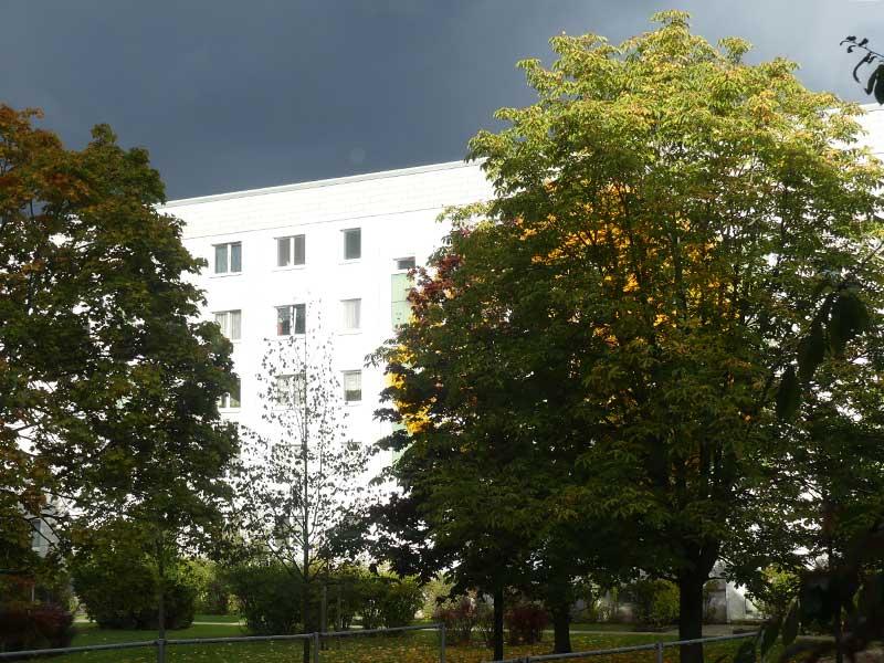Herbst in Grünau
