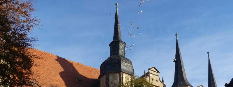 Fototour bei bestem Herbstwetter und tollem Licht in einer Lieblingsstadt.