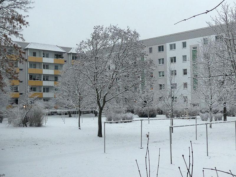 verzaubert durch den Schnee