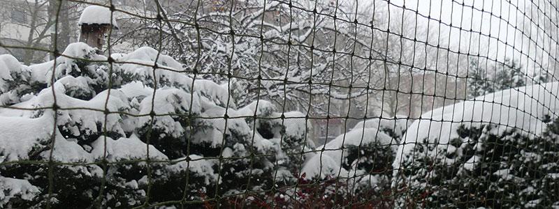 Schnee in Leipzig. Ich wäre so gern rausgegangen.