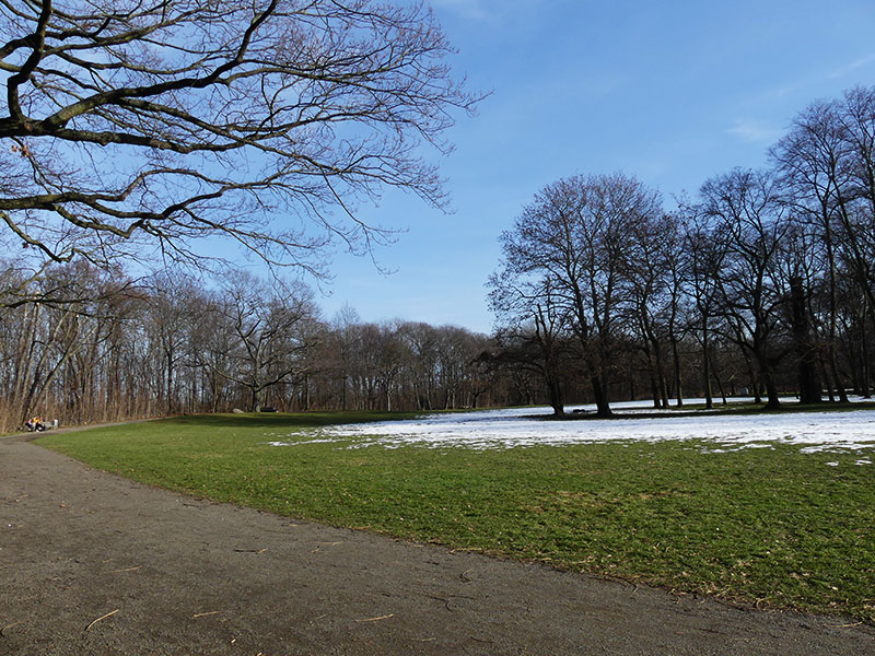 im Schönauer Park
