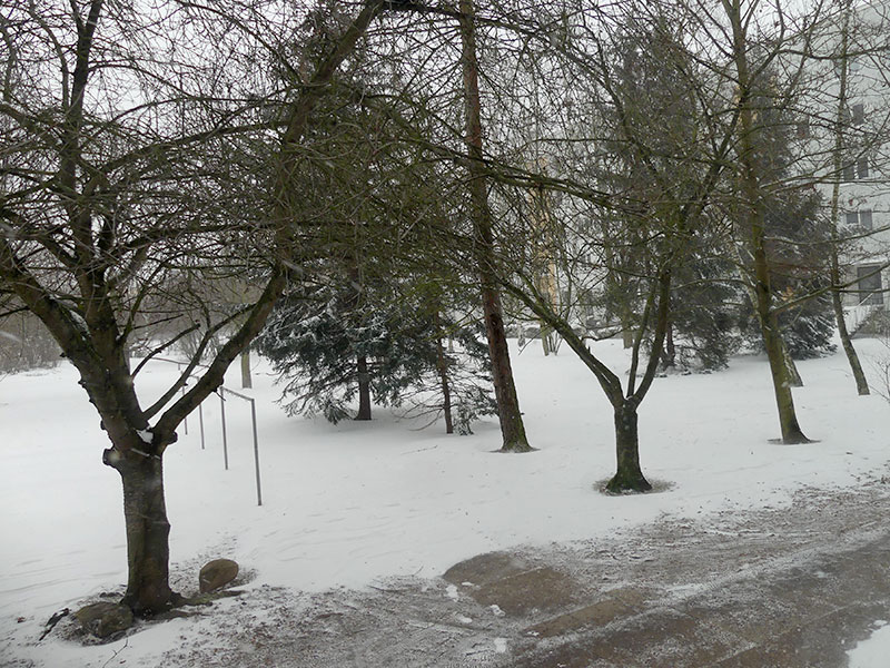 Schnee in Leipzig, Grünau im Winter
