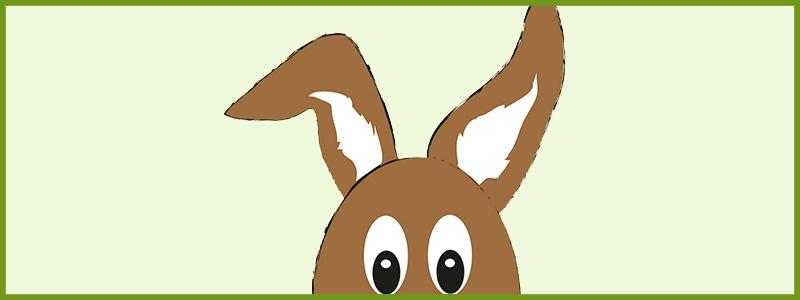 Ein Hase aus Wolle. Filzen mit der Nadel – eine Anleitung