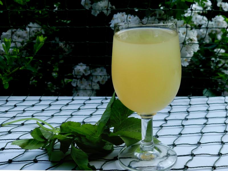 Limonade aus Wildkräutern