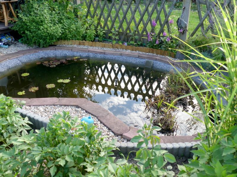 der neue Gartenteich und bitte keine Katastrophe mehr