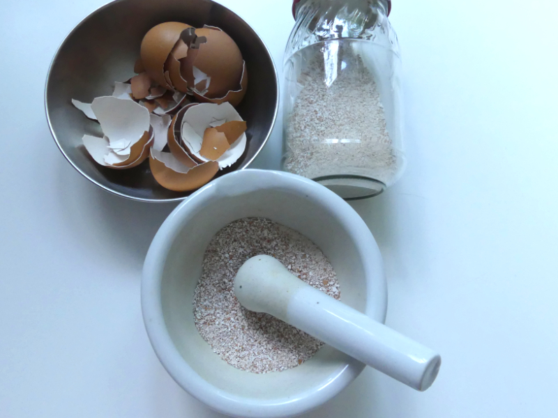 Kalk für die Pflanzen aus zerriebenen Eierschalen
